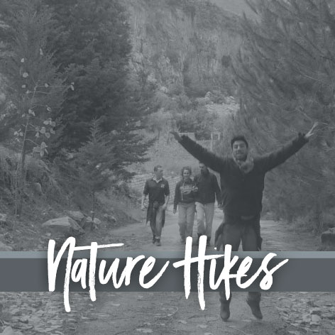 Nature Hikes with Body Mind Consultancy - London, Beirut